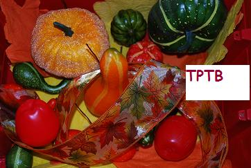 "New Fall Theme:  Fall Leaves Song, Fall Sensory Tubs, Pumpkin ""Emotions"""