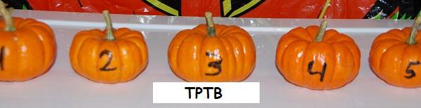 Pumpkin Math, Leaf Tactile Cards, and a Pumpkin Relay!