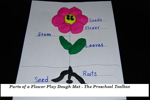 Parts of a Flower Play Dough Mat and Collage