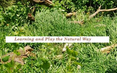 "It's Just a ""Stone's Throw Away"" to Learning & Play the Nature Way!"