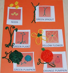 Pumpkin Life Cycle and Printable Sequencing Cards for Kids!