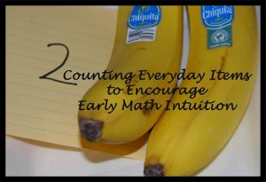 Counting Everyday Items