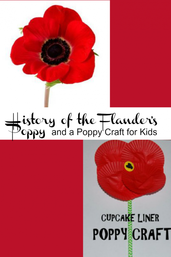 The History of the Flanders Poppy & Poppy Craft for Kids!