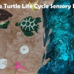 Sea Turtle Life Cycle Sensory Bin
