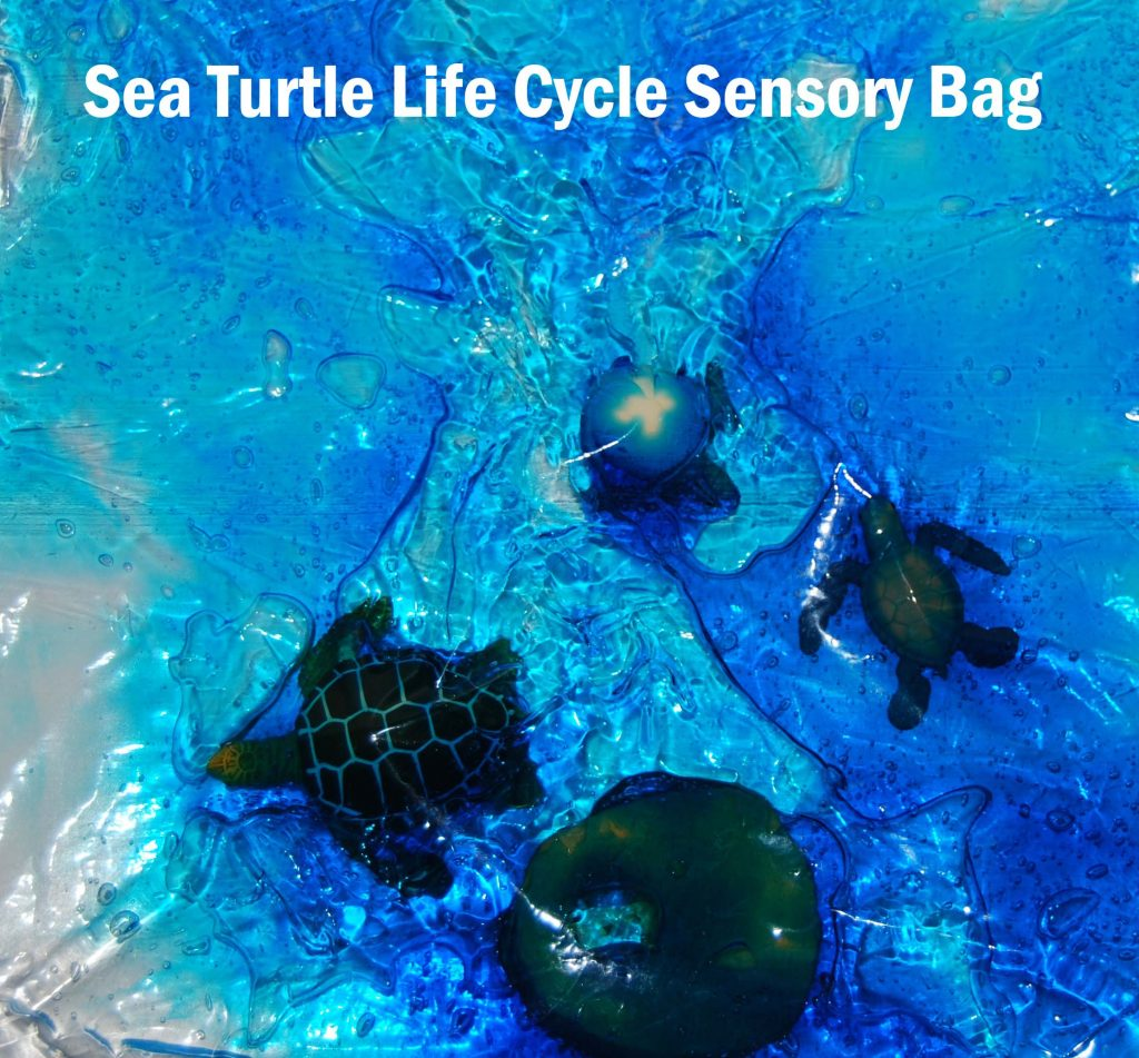 Sea Turtle Sensory Bag_1