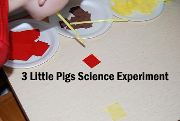 3 Little Pigs Science