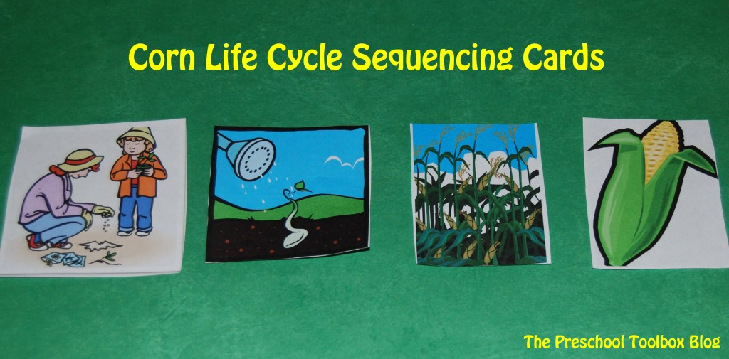 Corn Life Cycle Sequencing Cards
