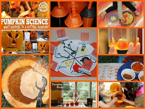 Pumpkin Science Activities for Preschool