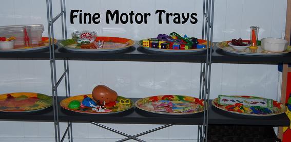 Fine Motor Trays