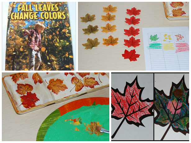 Fall Leaf Activities for Preschool