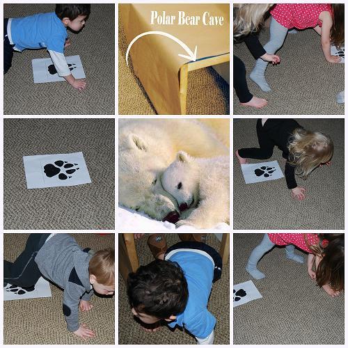 polar bear activities and books for preschool the