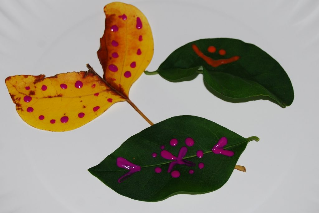Playful Learning with Leaves in Preschool