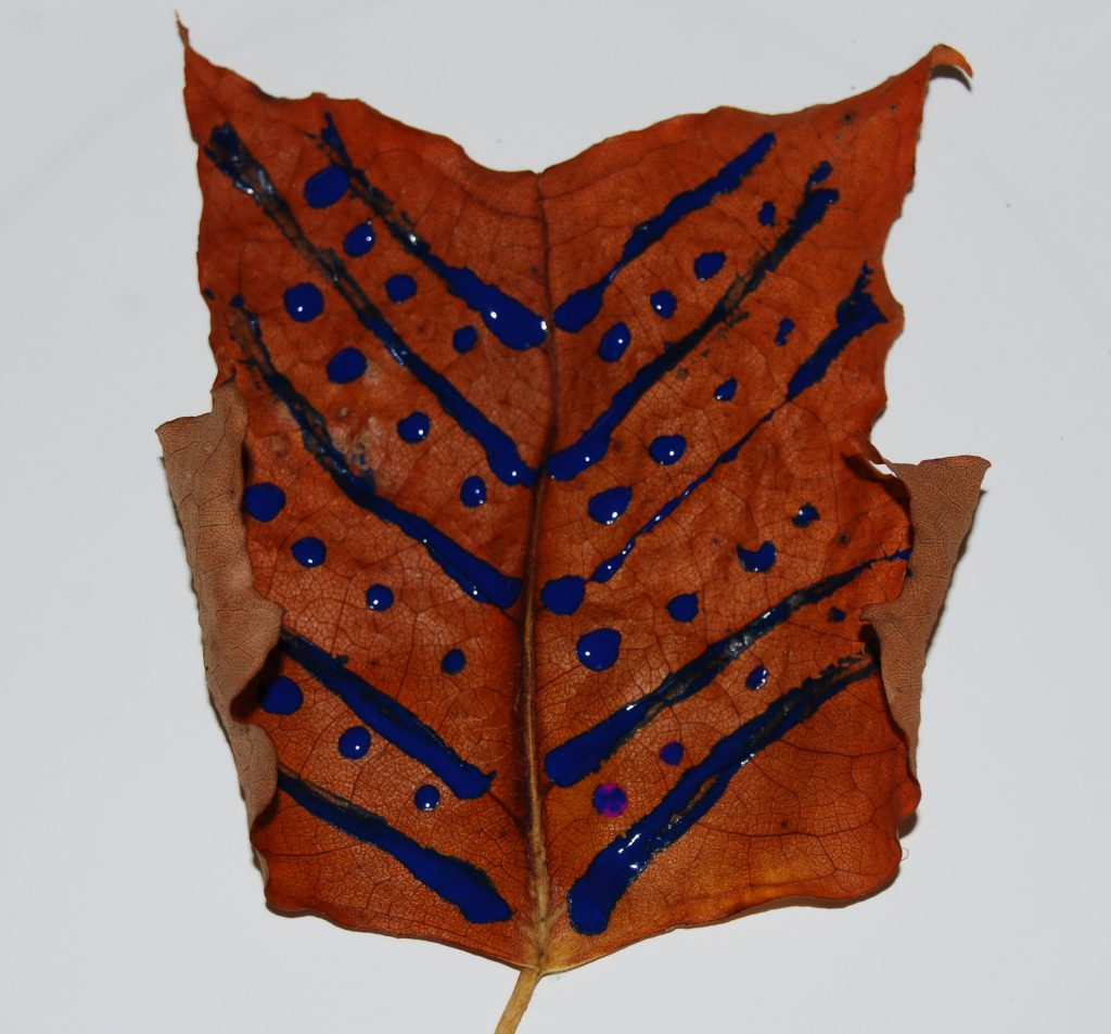 Playing and Learning with Leaves in Preschool