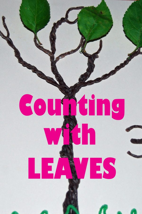 Playful Learning Activities with LEAVES in Preschool!