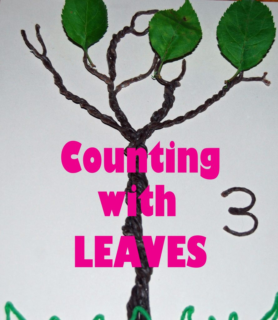 Wikki Stix Trees Counting