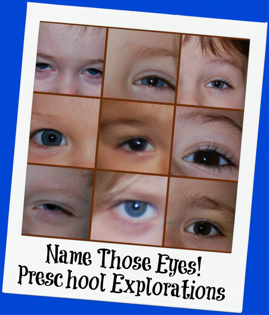 Name Those Eyes Preschool Exploration