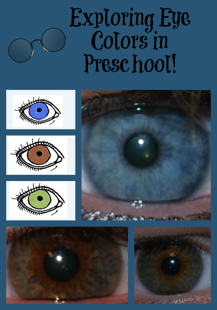Preschool Science_Exploring Eye Colors in Families and Friends