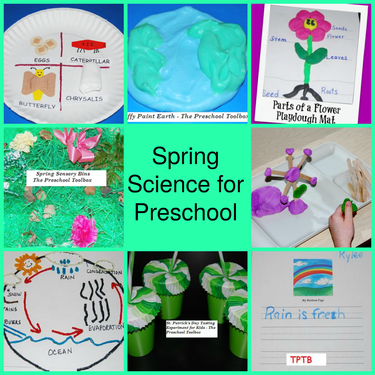 Spring Science Explorations for Preschool