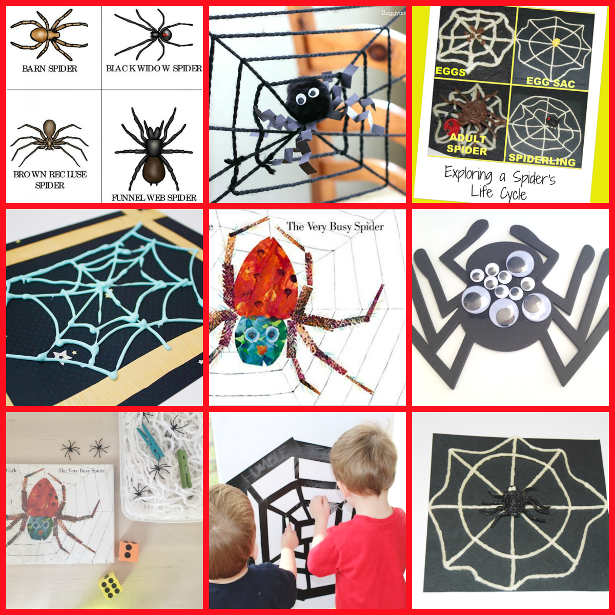 eric carle author study the very busy spider activities for