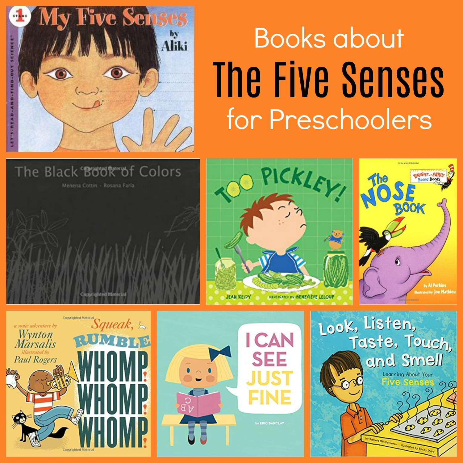Books about the 5 Senses for Preschool