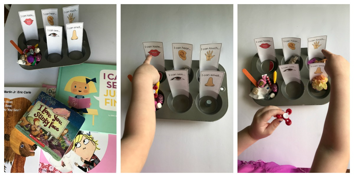 Come play with a sensory sorting activity designed to help preschoolers learn about the 5 Senses.