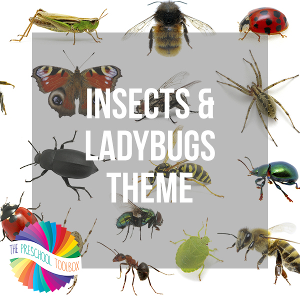Insects and Ladybugs Thematic Unit for Preschoolers