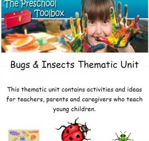 Insects and Ladybugs